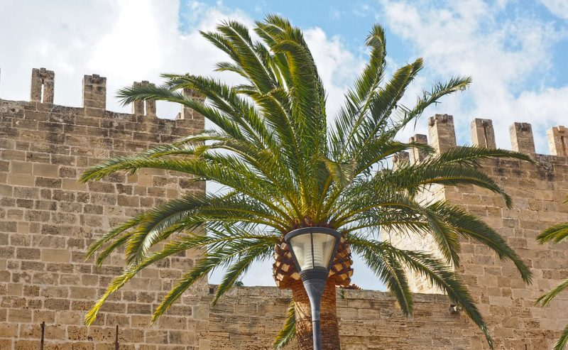 walls-of-alcudia