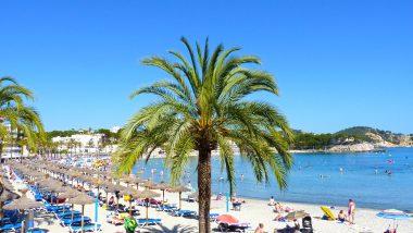 Paguera beach